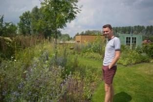 """Ecologische tuin van Dimitri brengt meer leven dan strak gazon: """"Als we 's avonds dicht bij de perken zitten, zoemt het van de bijen"""""""