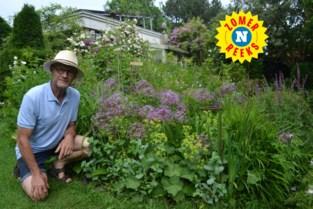 """Verpleger op rust Marc (67) ontwerpt in bijberoep tuinen en schrijft er ook boeken over: """"Ik wil mijn kennis niet verloren laten gaan"""""""