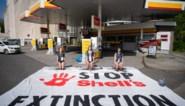 Shell gaat in beroep tegen vonnis in spraakmakende klimaatzaak in Nederland