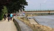 Maasbrug mag open voor verkeer en krijgt volgende week grondige ondergrondse inspectie