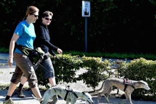 32ste editie Zennetochten: wandelclub De Slak verwacht zondag duizend stappers