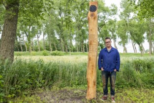 """Damme heeft eerste Kom op tegen Kanker-wandelpad in de provincie, waar je ook kan genieten van poëzie: """"Wandelen is gezond, voor lichaam én de geest"""""""