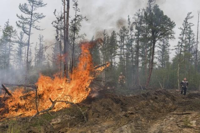 Natuurbranden blijven hevig woeden in Rusland