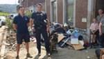 """Agent  over plunderingen: """"Bekende criminele familie was met takelwagen op pad"""