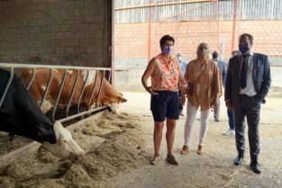 """Minister Clarinval bezoekt fruittelers en landbouwers in Haspengouw: """"Hun positie in de voedselketen versterken"""""""
