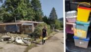"""Vrijwilligers zoeken naar verweesde katten in Waals rampgebied, maar veel hoop is er niet: """"Hing een geur van dode dieren"""""""