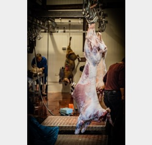 Zo vierden Limburgse moslims het Offerfeest