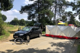71-jarige fietser overleden na aanrijding op Proosthoevebaan