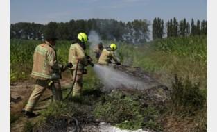 Brandweer redt muis uit brandend snoeiafval