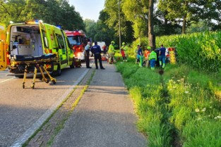 44-jarige Wellenaar gewond na klap tegen boom in Meeuwen