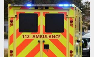 Bestuurder gewond na klap tegen boom in Bree