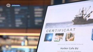 Café Harbor serveert enkel duurzame vis (mét certificaat)