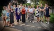 Buren voelen zich niet meer veilig in eigen straat na bijtincident, gemeente start bemiddeling