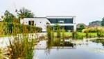 De tuin die strak begint en wild eindigt: Japanse vibes in Tessenderlo bij Suzanne en Rudi