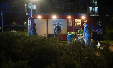 Man doodgeschoten terwijl hij hond uitlaat in Nederland