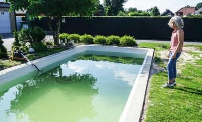 Tientallen klanten, waaronder Houthalense opgelicht door Whoppa Pool: 15.000 euro voorschot, geen zwembad