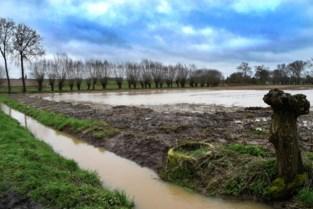 Geen Ardense toestanden, maar wel zestien oproepen voor wateroverlast