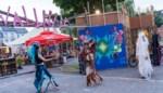 """Buurtfestival Wallhala neemt vijf weken lang het Wolterspark over: """"We zetten in op jong en oud"""""""