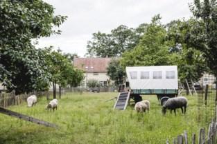 Wortel-Kolonie moet nog even wachten op erkenning als werelderfgoed: pas maandag beslissing