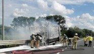 Vrachtwagen brandt uit op pechstrook R6, chauffeur ongedeerd