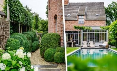 Nauwelijks bloemen, maar wel een zwembad en vijftig tinten groen: de zomertuin van Christophe en Sofie in Tessenderlo