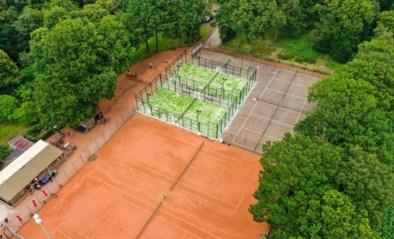 Tennisclub Molenheide biedt nu ook padel, met natuur als extra troef