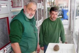 Project 'Egel volgen': wie diertje ziet met geel buisje over een stekel, kan dat best melden