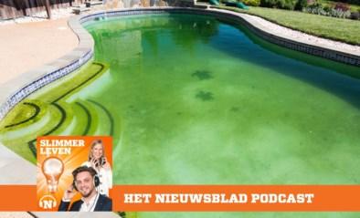 PODCAST. Help! Mijn zwembad kleurt groen!