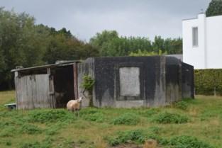 Activist plant toeristische bunkerwandeling om verhindering sloop te vieren