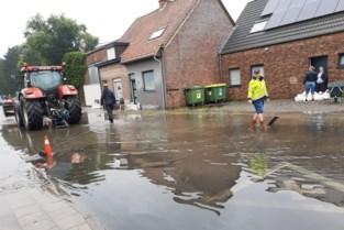 """Landbouwer voorkomt dat water huizen binnenloopt: """"Hopelijk komt er definitieve oplossing"""""""