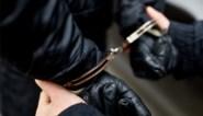 Ook derde inbreker gevat na klopjacht