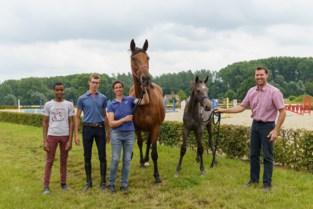 """Paard van Ines (45) en Tom (47) uit Melle naar Olympische Spelen: """"Gouden medaille is een droom"""""""