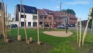 'Natuurlijk' spelen kan voortaan in gerenoveerd speeltuintje Broekstraat