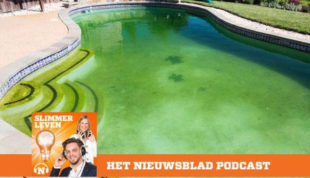 PODCAST. Zo zorg je ervoor dat je zwembad niet groen kleurt