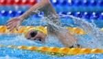 OS LIVE. Titmus en Ledecky schitteren in het zwembad, Nederland stapelt roeimedailles op