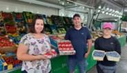 "Bilzense fruitteler geeft bessen gratis weg: ""Supermarkten importeren liever kleinfruit"""