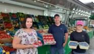 """Daarom schenkt deze fruitteler zijn bessen gratis weg: """"Supermarkten importeren het liever"""""""