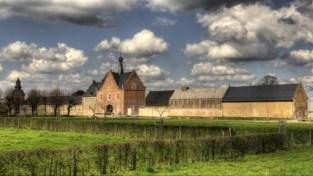 Moord in het museum, Sting in de platenzaak en Japan in Limburg: wat je op 48 uur kunt doen in Hasselt