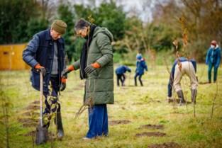Potentiële locaties voor nieuwe bomen doorgeven kan via online Bomenkaart