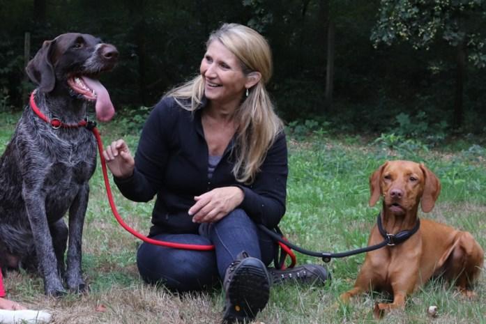 """Puppy's vertonen gedragsproblemen door lockdown: """"Laat je hondje niet opeens alleen thuis"""""""