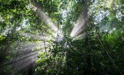 Vanaf vandaag zijn alle natuurlijke hulpbronnen voor hele jaar opgebruikt: hoe kan dat (beter) en wat nu?
