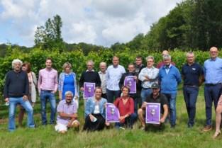 Hagelandse wijnmakers gooien opnieuw de deuren open