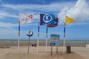 """Strandredders doen aangifte bij politie omdat vlaggenmasten uitgegraven worden: """"Het zijn herkenningspunten voor toeristen"""""""