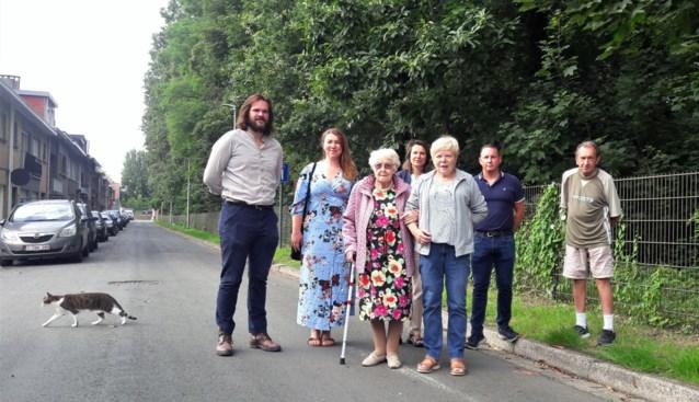 """Bewoners Wirixdreef in Niel strijden voor 'hun' bomen: """"Er mag er geen enkele weg"""""""