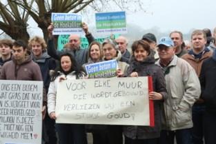 Uitspraak van Vlaams minister Demir klinkt voor Hoekakker 'als muziek in de oren'