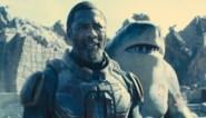 RECENSIE. 'The suicide squad' van James Gunn: Wat delen superschurken en een pratende haai? ***