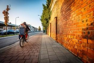 AWV vernieuwt fietspaden en bushaltes: Leuvensesteenweg plaatselijk eenrichting