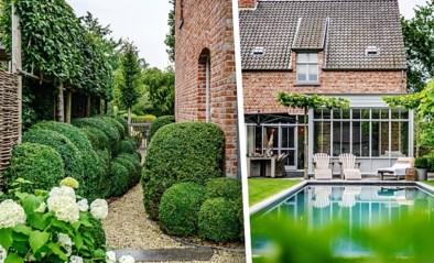 De buxus ging eruit voor het zwembad, maar mocht daarna weer terug: zo kwam de tuin van Christophe en Sofie tot stand