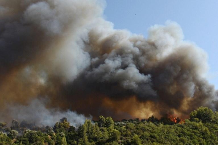 Gelombang panas yang panjang secara historis: Desa-desa di semenanjung Yunani dievakuasi karena kebakaran hutan