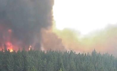 Speciale camera filmt bosbranden in Amerikaanse staat Californië